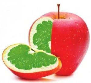 Gmo äpple